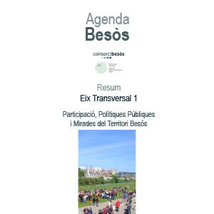 Resum eix transversal 1:Participació, polítiques públiques i mirades del territori besòs