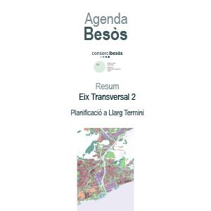 Resum eix transversal 2:Planificació a llarg termini